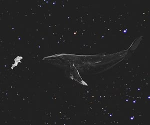 wallpaper, exo, and space image