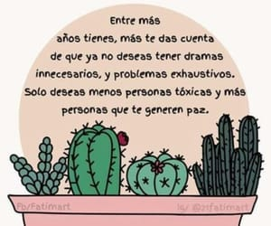 frases, cactus, and frases en español image