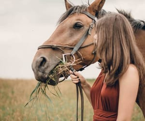 bit, girl, and rustic image