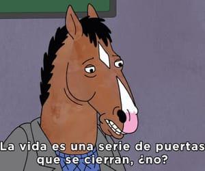 horseman, bojack, and bojack horseman image