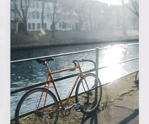 bicycle, city, and lake image