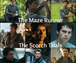 thomas, the maze runner, and the scorch trials image