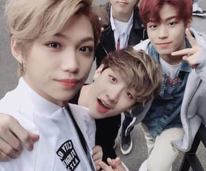 felix, han, and jisung image