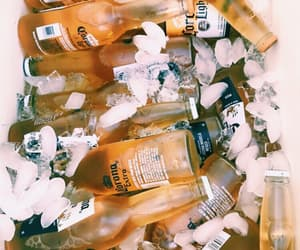 beer and corona extra image