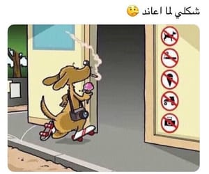 arab, صور مضحكة, and عناد image