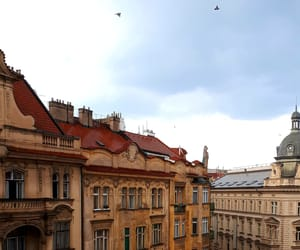 colors, fly, and prague image