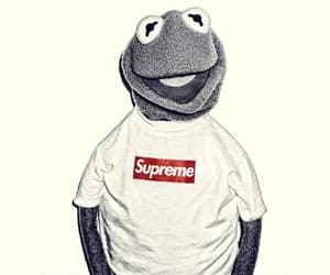 frog, hipster, and kermit image