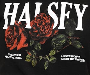 black, roses, and red image