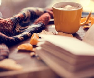 autumn, book, and blanket image