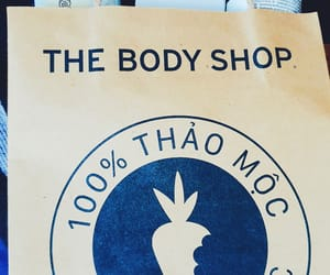 tea tree and the body shop image