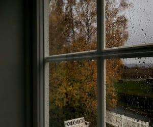 autumn, cold, and rain image