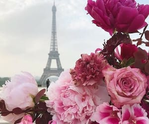 capital, flowers, and paris image