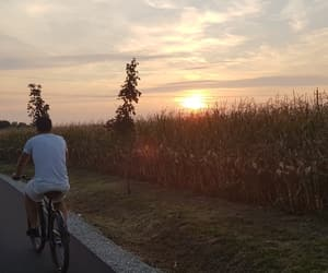 beautiful, bicycle, and sunset image