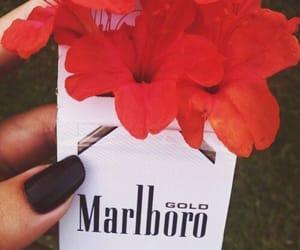 flowers, marlboro, and smoke image