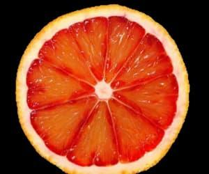 fruit, orange, and overlay image