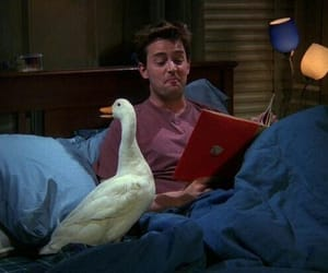 friends, chandler, and duck image
