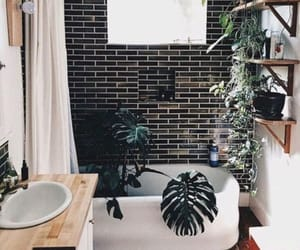 bathroom, natural, and plant image