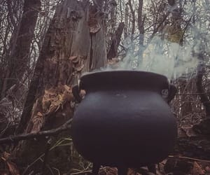 witch, autumn, and cauldron image
