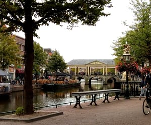 city, the netherlands, and college image