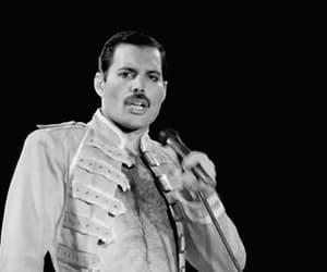 Freddie Mercury, icon, and gif image