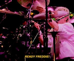 Freddie Mercury, gif, and icon image
