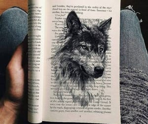 wolf, book, and art image