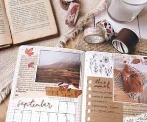 journal, autumn, and fall image