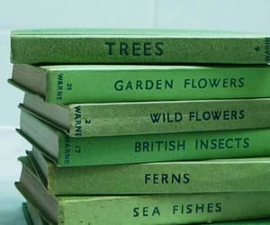 green, book, and aesthetic image