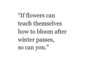 quotes, flowers, and winter image