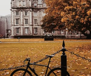 autumn and dublin image