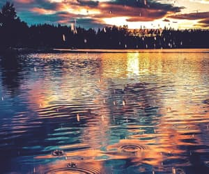 rain, nature, and beautiful image