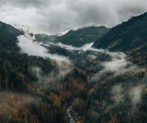 adventure, wanderlust, and wild image