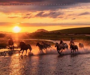 cowboy, horses, and river image