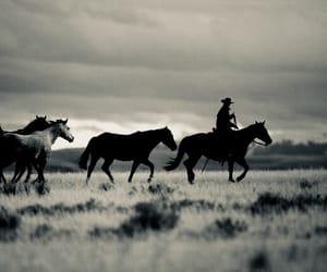 western, cowboy, and horses image