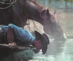 cowboy, horse, and water image