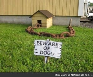 beware, house, and sign image