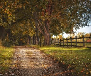 autumn, farmhouse, and country living image