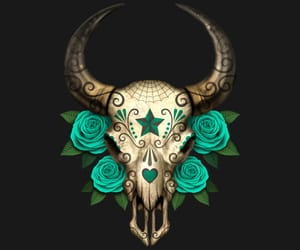 flowers, skull, and stars image