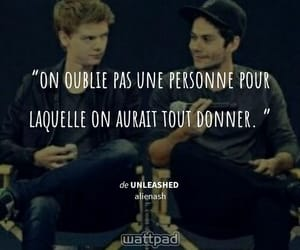 francais, newt, and phrase image