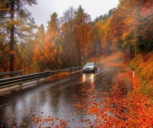 autumn, october, and rain image