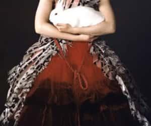 Mia Wasikowska image