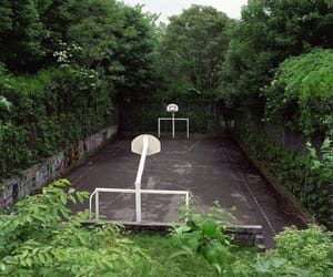 aesthetic, Basketball, and nature image