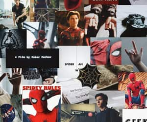 man and spider image
