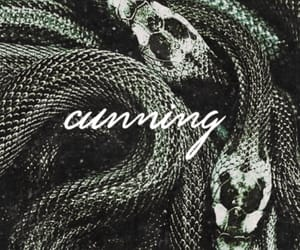 hogwarts, slytherin, and cunning image