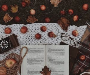 apples, autumn, and books image
