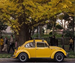 yellow, car, and tree image