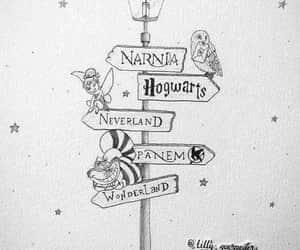 hogwarts, narnia, and panem image
