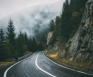 fog, road, and trip image