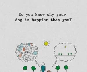 dog, free, and happy image