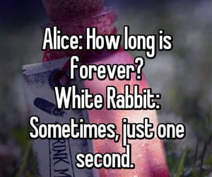 alice in wonderland, time, and white rabbit image